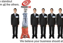 Phoenix ONE -Our Company Info / Our Company Solutions That Mean Business