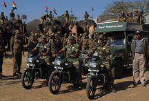 Wildlife NGO's in India