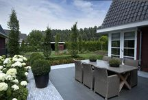 Terasa a zahrada