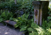 Projects: Italian Garden in New England / by Carolyn Edsell-Vetter
