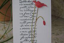 Card ideas / by Judy M