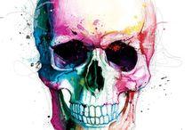 Teschio watercolor hd