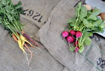 Weld County Farmers Markets & Produce Stands / Naturally the #1 agricultural county in Colorado also has the best farmers markets and produces around. Come visit! Go to www.discoverweld.com for dates, times and locations!