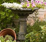 ~Great tips for a Beautiful Outdoors~ / by Tina Brooks