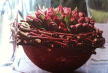 флористика-весна