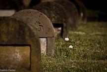Cimitero Monumentale