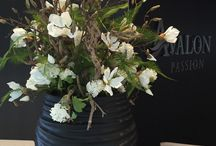 Flower arrangements & plants
