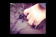outdoor learning / preschool learning outside