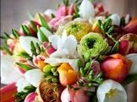 Tulips - My favorite flower! / by Lu Ann Wells