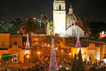 The Holiday Season in San Diego!
