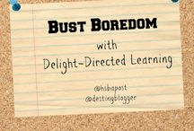 Delight Directed Learning - HSBA