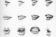 Anatomy: mouths