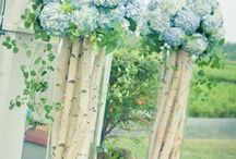 Wedding Flowers / by Lanie Reynolds