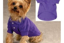 Polodog clothes