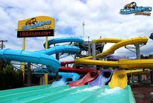 JUNE Discount Fun! / SAVE on admission when you visit the park in June! Receive a BIGGER discount when you purchase tickets online at WildWaves.com! / by Wild Waves Theme Park