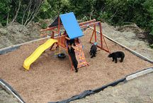 Kids New Playground / by Pete Mitchell