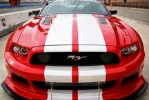 Ford & Mustang Cars
