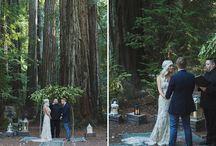 Kimmi and Mike's Wedding Idea's