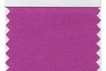 radiant orchid 2014 pantone color of the year / by Erin McLeod