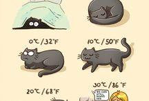 Dibujos y arte gatunos / Dibujos, esculturas y chistes con los gatos como tema principal