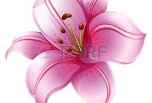 Fleur cover