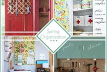 organization / by Lynda Stewart