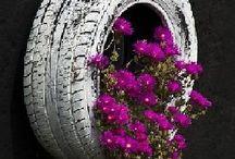 pneu vaso