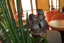 Hotel Gallo Tignale / 3 stars Hotel Gallo in Tignale at lake Garda - www.hotelgallo.com