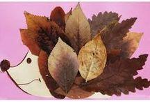 Art for Montessori 2.5 - 6 years