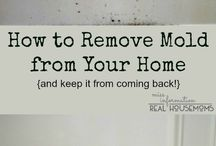 Cleaning your house!