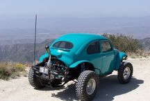 buggy and beetle