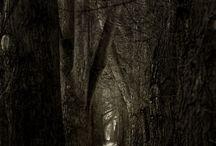 Haunted Scenery