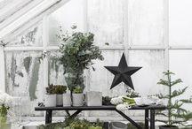 I växthuset