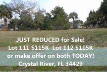 Florida Waterfront Bargains