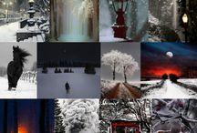 le 4 stagioni dei colori