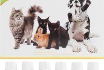 Essential Oils for Pets / Essential Oils for Pets