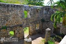 Virgin Island Ecotours