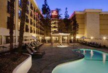 Stockton Places to Stay / Stockton California Places to Stay - Hotels and Motels / by Visit Stockton