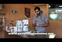 Veterinaria Online