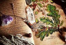 Nature&Memories