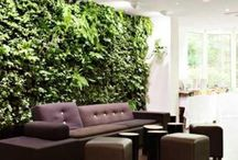 GREEN SPACES / Adding that dash of green in your house does not necessarily mean potted plants; check out these innovative ways to add that much needed green element in your house.