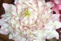 Dalia / Sugar gum paste Flowers