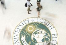 University of South Florida, Tampa / by That Girl