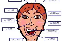 Carte mentale visage