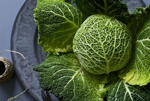 Food photo - savoy cabbage