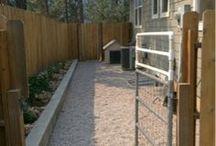 Dog Yard