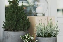 Outdoor / Terasse decor