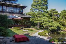Jardin Kyoto