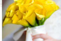 Flowers / by Christine Heim