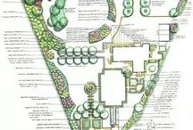Forest gardening/Permaculture / by Cozy Crop House